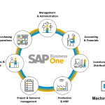 SAP Business One: Future Of The SME